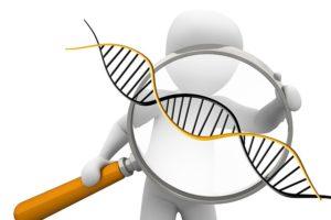 DNS szekvenciálás
