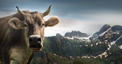 Svájc a fintech iparági szabályozás könnyítését tervezi