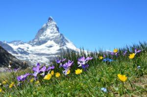 Fintech szabályozás a svájci Alpokban