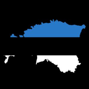 Észország vezet a közszféra digitalizációjában