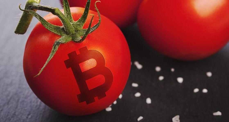 üvegházas paradicsomok bitcoin hőből