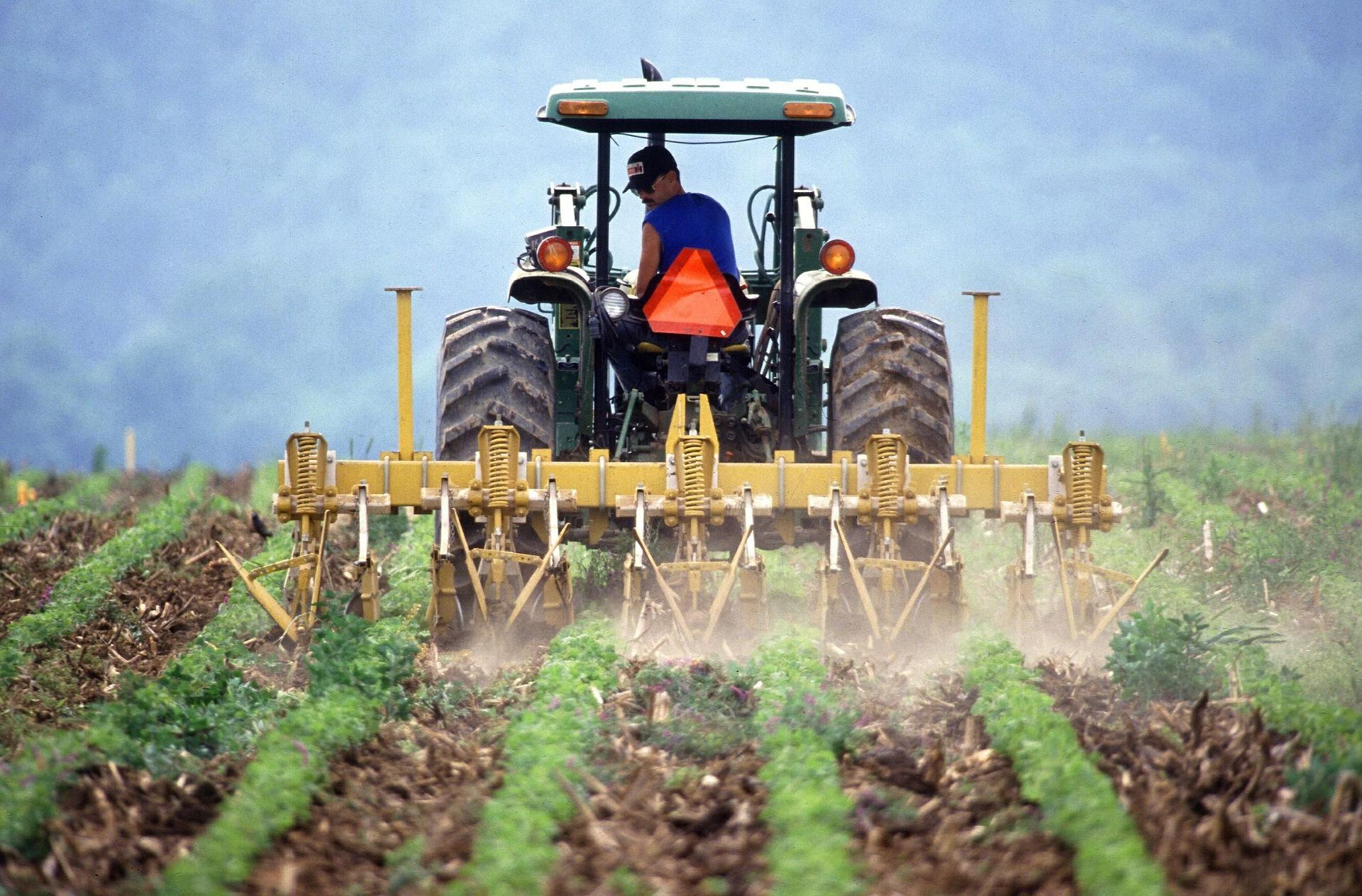 Rubel helyett kriptopénzzel fizetnek az orosz farmerek