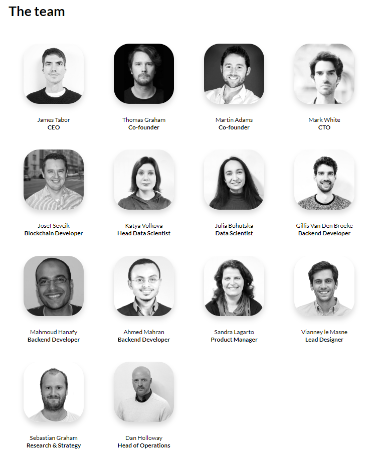 MEDIA Protocol ICO csapat