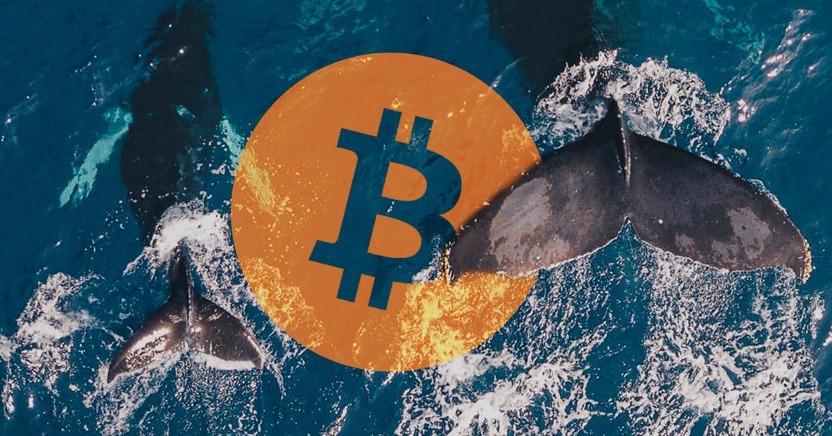 bitcoin riasztás btc usd átalakítóhoz