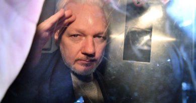 Julian, Wikileaks