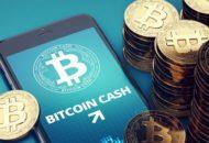 Áprilisban egyetlen rejtélyes bitcoin cash tárca állt a tranzakciók 50%-a mögött