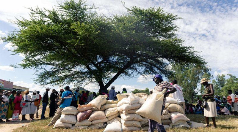 Zimbabwe mobilos kifizetések