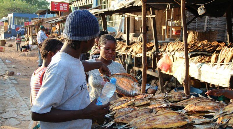 Afrika piac száraz hal halpiac