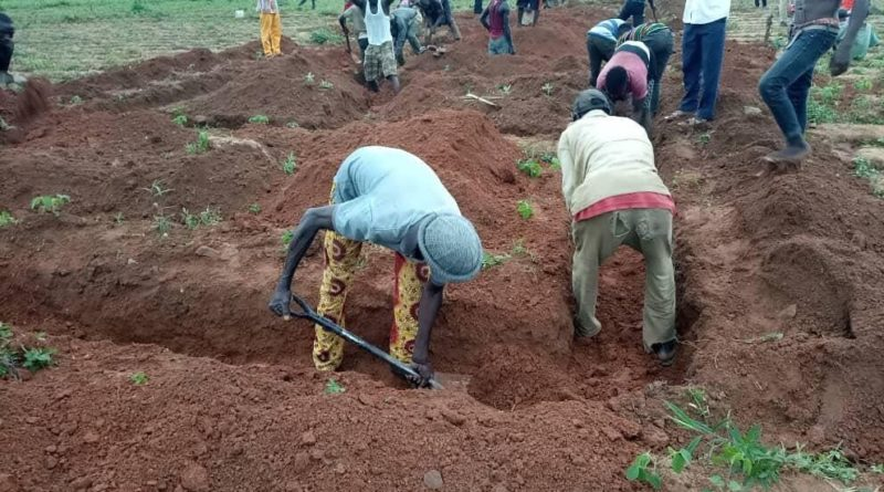 afrika iskola paxful alap fundamentum munkás
