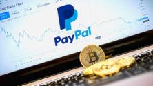 Paypal alkalmazás