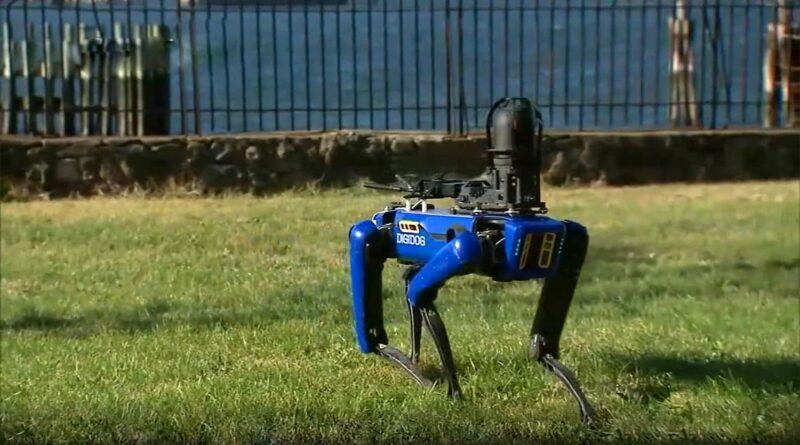 robotkutya