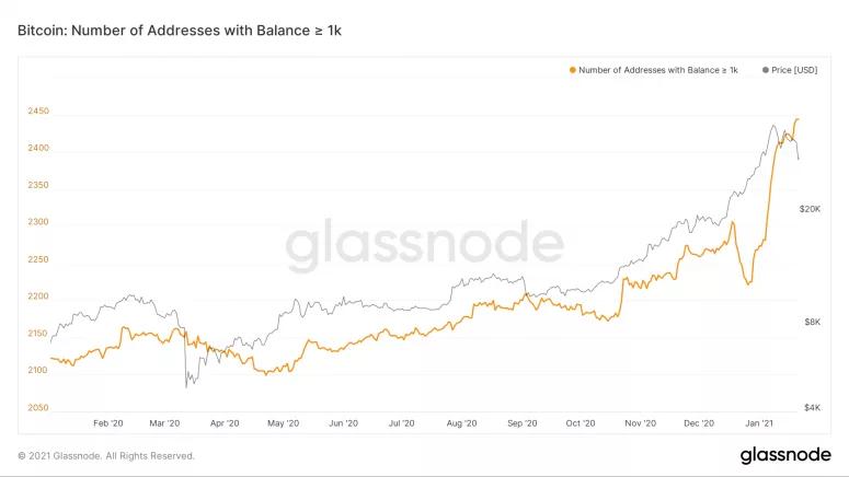 Bitcoin bálnák tovább nőttek