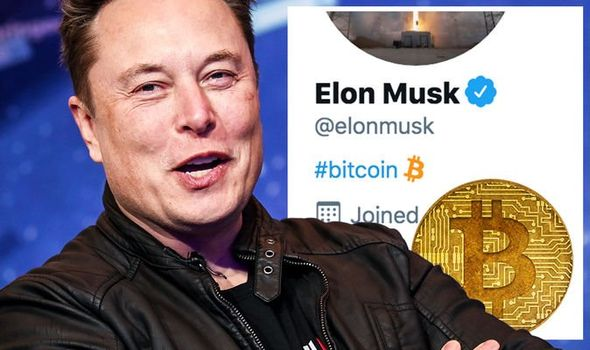 Musk és a bitcoin