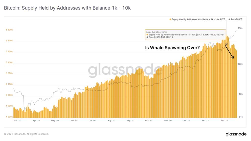visszaesett a nagy összegű bitcoint tartalmazó tárcák száma