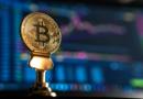 bitcoin kultusz