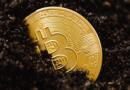 Bitcoin árfolyamesés